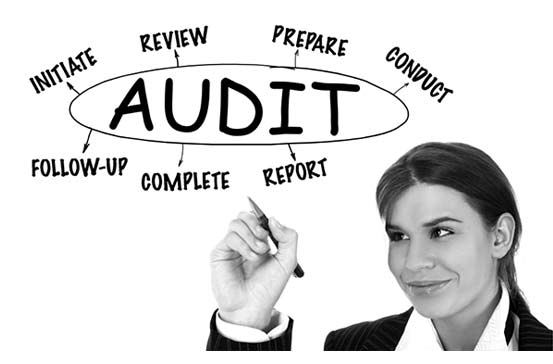 Policy Audits
